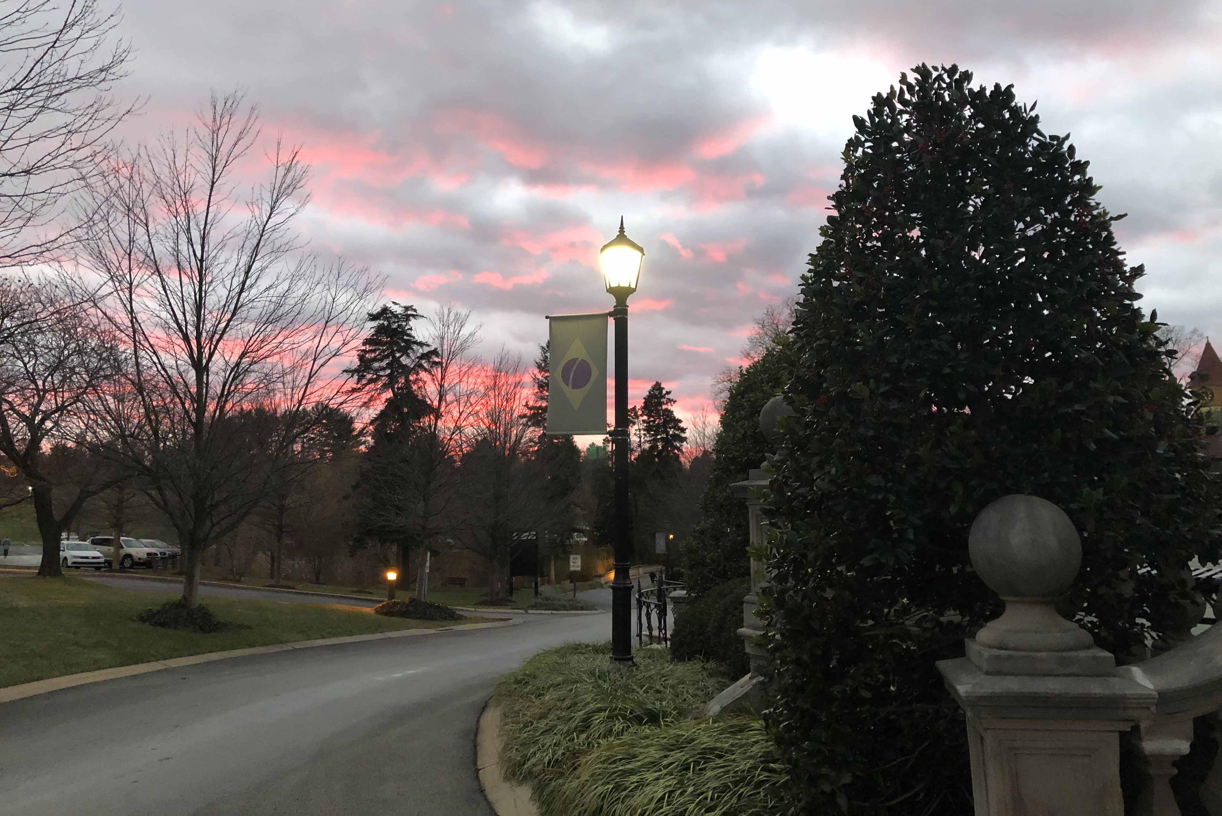 View of a road on campus with trees around it at sunset.