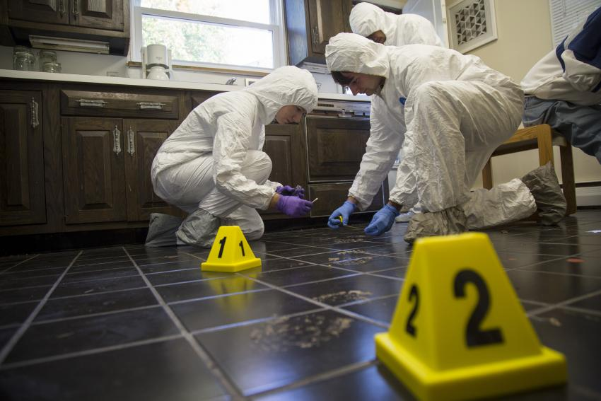 Buy forensic science research paper