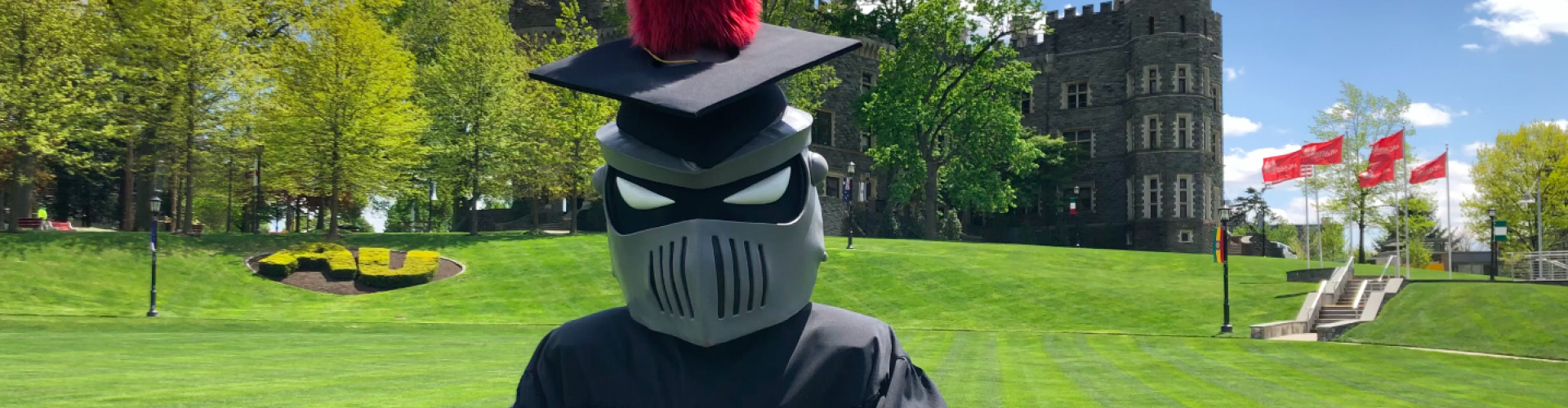 Knight in Cap and Gown