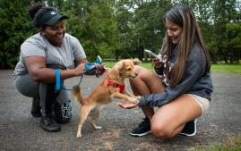 Two Arcadia University students kneeling to pet a dog during Day of Service even