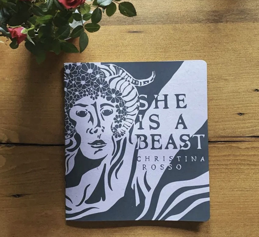 She is a Beast cover art