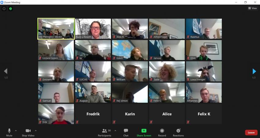Screenshot of Zoom meeting with Sweden students