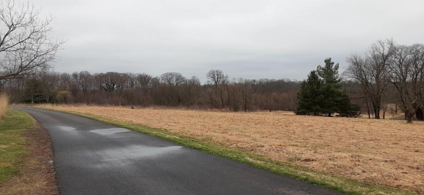 Panoramic shot of preserved lands from Gwynedd Wildlife Preserve.